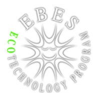EBES ECO-technology program
